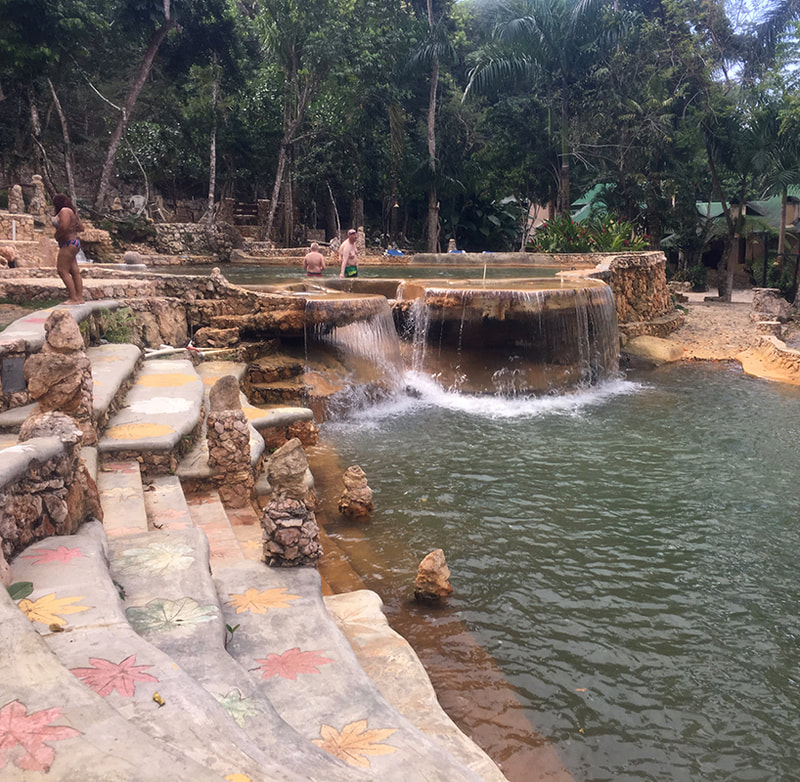 natural swimming pools with water fall