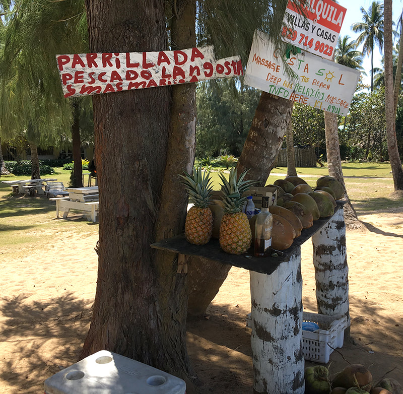 pineapples and coconuts on a makeshift table with a hand painted sign advertising shrimp and lobster in Spanish